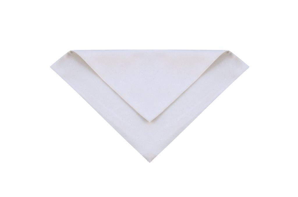 Guardanapo Branco - 0434